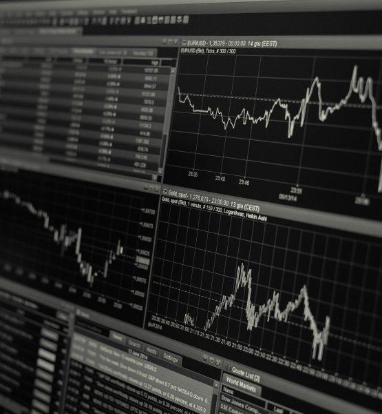 5 Fundamental Basics of the Stock Market: Beginner Investors Start Here